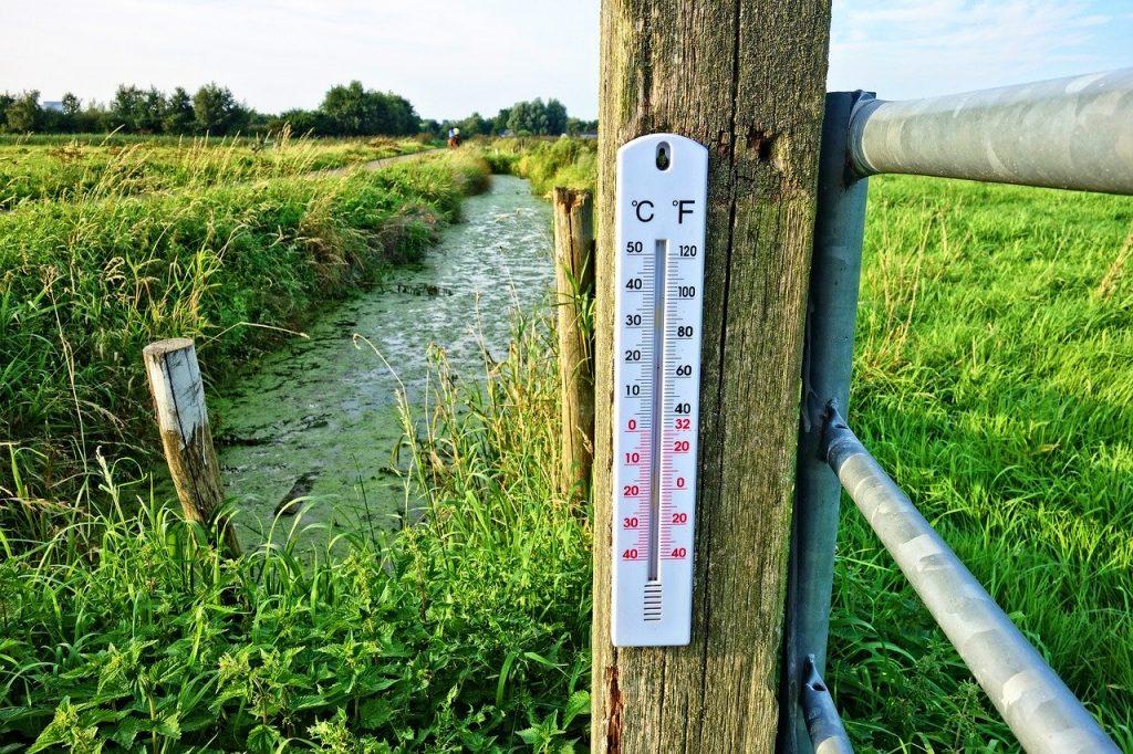 conoce los termómetros meteorológicos