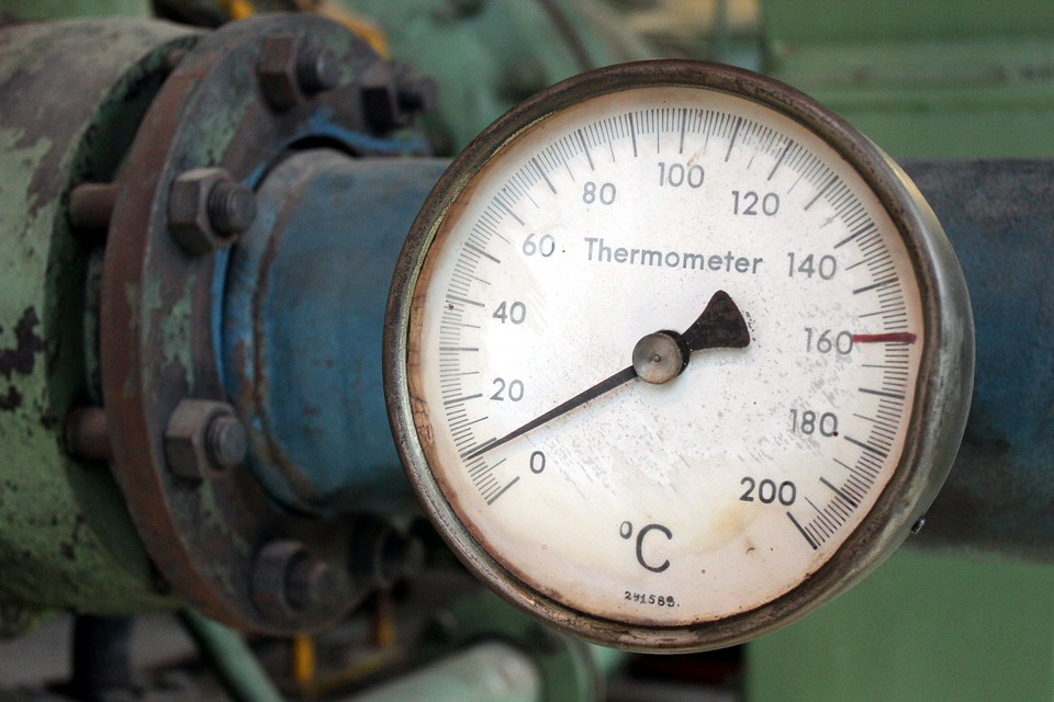 termómetro profesional